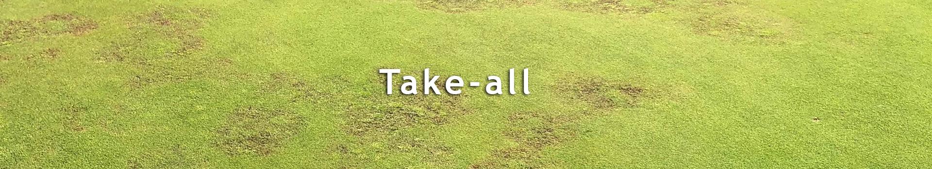 Kategoribillede_Take-All_DE