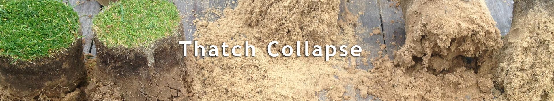 Kategoribillede_Thatch-collapse_alle-sprog